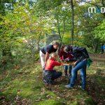 organisation challenge et défis en Alsace