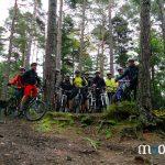 la forêt du massif des Vosges à VTT