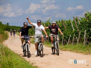 VTT et vélo en Alsace et dans les Vosges pour groupe et entreprise