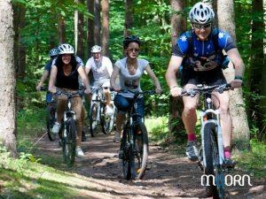 balades à vélo et VTT Vosges et Alsace