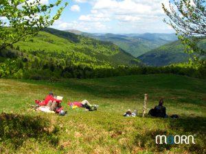 Petite sieste dans les Vosges