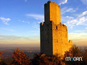 balade privée vers le château et le vignoble d'Alsace