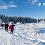 Vers le Tanet en raquettes à neige