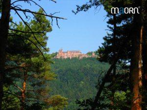 Randonnée vers le Mont Saitne Odile