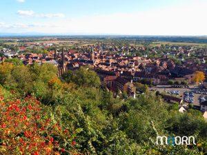 Obernai depuis le mémorial - Alsace